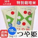 【白米】30年山形県産特別栽培米つや姫 10kg(5kg×2...