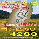【送料無料】山形コシヒカリ庄内産 精米9kg or 玄米10kg