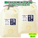 玄米 棚田米 10kgコシヒカリ 石川産 奥能登 特別栽培米 令和元年産 送料無料お米 分つき米