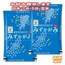牛とんぽう 2箱 豚とんぽう 2箱セット 滋賀県 関西 人気 餃子 焼くだけ 簡単 条件付き送料無料
