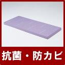 パラマウントベッド プレグラーマットレス[91cm幅] ベッド関連用品 介護用品 (介護用品 介護 福祉用具 ベッド ベット 寝具 )