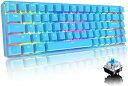 【送料無料】ゲーミングキーボード メカニカル式 青軸 コンパクト 68キー防衝突 ゲーム用キーボード 18種類のRGBバックライト Type C 有線 防水 打ちやすい 英語配列 ブルー(青軸)