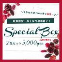 【2足入り・送料無料】スペシャルボックス♪福袋【数量限定】※返品交換不可