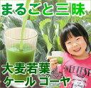 まるごと三昧3つの野菜【大麦若葉 / ゴーヤ / ケール】抹茶入玄米茶まるごとさんかく茶【青汁 / ティーライフ】