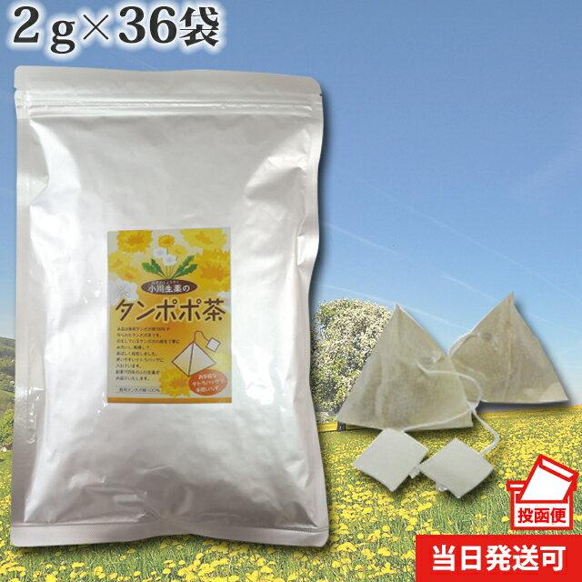 たんぽぽ茶〈タンポポ茶〉72g(36袋)テトラバッグ使用【当日発送可】DM便送料無料