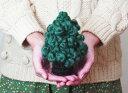 アブリルの毛糸で編むカンパネルラのちいさな木 クリスマスツリー 毛糸
