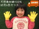 カラー軍手[幼児6色セット]【今治タオルの糸】綿100%日本製送料無料ポイント2倍