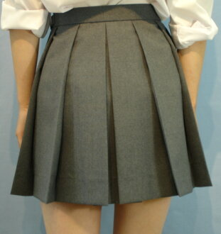 12H-G01Big stylish 12 box ヒダスカート Big school skirt