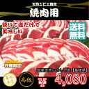 【焼肉用】天然ジビエ イノシシ肉 猪肉 国産 島根 500g...
