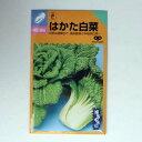 在来種/固定種/野菜のタネ「はかた白菜(半結球)5ml(約1500粒)」畑懐〔はふう〕の種【メール便可】