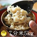 十二割麹味噌 田毎(たごと) 甘口 【500g】 手作り ギフト みそ 味噌 長野県