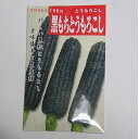 在来種/固定種/野菜のタネ「黒もちもろこし50ml約100粒」畑懐〔はふう〕の種【メール便可】