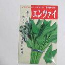 在来種/固定種/野菜の種「エンツァイ〔空心菜〕」10ml約150粒/畑懐〔はふう〕