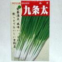 在来種/固定種/野菜のタネ「九条太ネギ10ml約1700粒」畑懐〔はふう〕の種【メール便可】