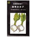 在来種/固定種/伝統野菜のタネ「金町小カブ 5ml 約1200粒」畑懐〔はふう〕の種【メール便可】