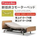 【開梱設置無料】フランスベッド 電動ベッド 新低床3モーターベッド レステックス-01F REST