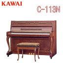 C113n_main
