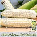 中国純天然昔風真空白糯玉米(とうもろこし・トウモロコシ・ワキシーコーン)超人気農作物・お土産定番・大好評
