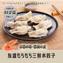 人気商品 友盛本場モチモチ三鮮水餃子・もちもちエビ