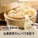 中国老山東伝統猪肉水餃(豚肉水ギョーザ)中華料理店