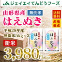 あす楽【新米】28年産 山形県産はえぬき無洗米10kg(5kg×2) 送料無料※一部地域は別途送料追加