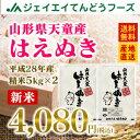 28年産 山形県天童産はえぬき精米10kg(5kg×2) 送料無料※一部地域は別途送料追加