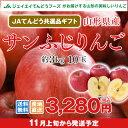 りんご ギフト 送料無料 サンふじ 秀品 約3kg(10玉) JAてんどう共選品 ※一部地域は別途送料 お歳暮 t15