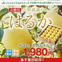最終在庫処分! りんご 送料無料 お徳用 山形県産りんごはるか 約5kg(玉数おまかせ) ※