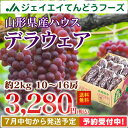 ぶどう 送料無料 山形県産ハウスデラウェア約2kg(10〜1...