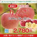 訳あり りんご 10kg 送料無料 山形県産 りんご 約10kg(28〜56玉) ※一部地域は別途送料追加