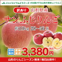訳あり りんご 10kg 送料無料 山形県産 りんご 約10kg(28?56玉) ※一部地域は別途送