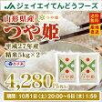 27年産 10kg米 送料無料米 つや姫米 白米 精米 山形県産米 山形米 ブランド米 産地直送米 あす楽米