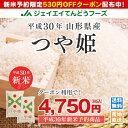 530円OFFクーポン付き 新米 10kg 送料無料 30年...