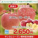 訳あり りんご 10kg 送料無料 山形県産 りんご 約10...