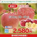 訳あり りんご 10kg 送料無料 山形県産 りんご 約10kg(28〜56玉) ※一部地域は別途送料追加 予約商品 フルーツ 果物 サンふじ t02 果物