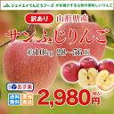 訳あり りんご 10kg 送料無料 山形県産 りんご 約10kg(28〜56玉) ※一部地域は別途送料