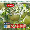 訳あり 果物 ラフランス 山形県産 約5kg(玉数おまかせ) 送料無料 一部地域は別途送料追加 フルーツ あす楽 n11