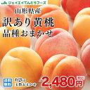 桃 訳あり 山形県産 黄桃品種おまかせ 約2kg(5玉〜10玉) ※一部地域は別途送料 柔ら