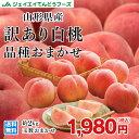 訳あり 桃 送料無料 山形県産 白桃 品種おまかせ約2kg(5玉〜10玉) ※一部地域は別途送