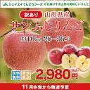訳あり りんご 10kg 送料無料 山形県産 りんご 約10kg