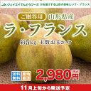 果物 ギフト 送料無料 山形県産洋梨ラフランス約5kg(3L...