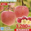 あす楽 訳あり りんご 10kg 送料無料 山形県産 りんご...