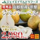 ギフト フルーツ 山形県産西洋梨シルバーベル 約5kg(玉数...