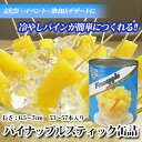 【タイ産】パイナップル スティック 1号缶(内容個数:53〜57本)バラ売り[天狗缶詰/業務用/冷やしパインに]