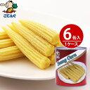 【6缶セット】 ヤングコーン水煮 缶詰 タイ産 ホール 1号...