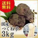 つくね芋 3kg 天極堂 国産 山芋 とろろ 和食 和菓子...