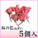 【桜の花塩漬け(一輪) 5個入】塩と梅酢で漬けこんだ八重桜の一輪