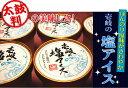壱岐の塩アイス  90ml×12個入り  ぷちふぁーむの牛乳から出来たバニラと壱岐の塩の絶妙なコラボレージョン