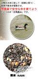 【】 一支国 原の辻遺跡 合鴨農法無農薬 古代 黒米 200g メール便使用  代引きの場合、別途送料がかかります。