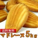 マドレーヌ 5kg 有名洋菓子店 高級品 訳あり 業務用 常温商品